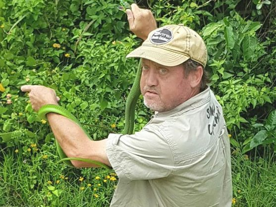 Snake catcher Sarel van der Merwe bagged three green mambas in one day last Friday. If you need a snake removed please contact Sarel on 082 683 1604.