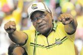 Zuma's campaigning will hurt ANC at polls – survey