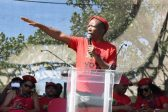 EFF hits out at media, accusing 'Stratcom' of making them look 'small in numbers'