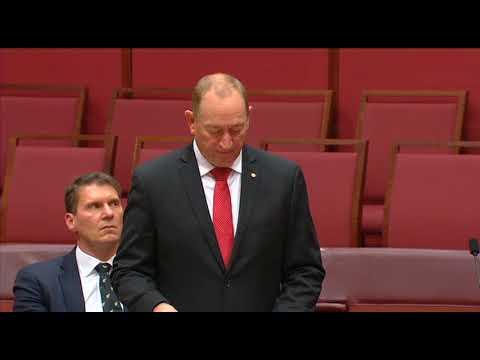 Queensland senator Fraser Anning. Picture: YouTube.