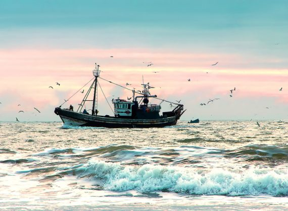 Agriculture, forestry, fisheries minister to launch small-scale fisheries sector in KZN