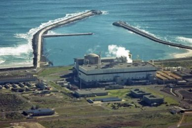 Koeberg is the most reliable nuclear power plant – Mantashe