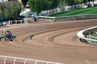 23rd horse death rocks Santa Anita