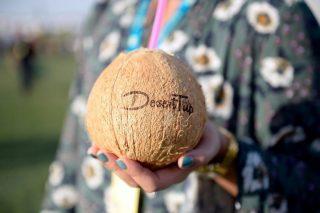 It's nuts! Coconut disrupts Edinburgh derby