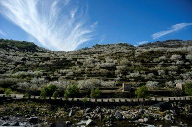 Extremadura, Spain's forgotten region