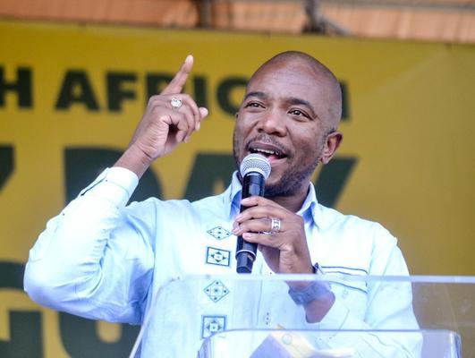 Public protector shares Maimane's original letter in Ramaphosa investigation