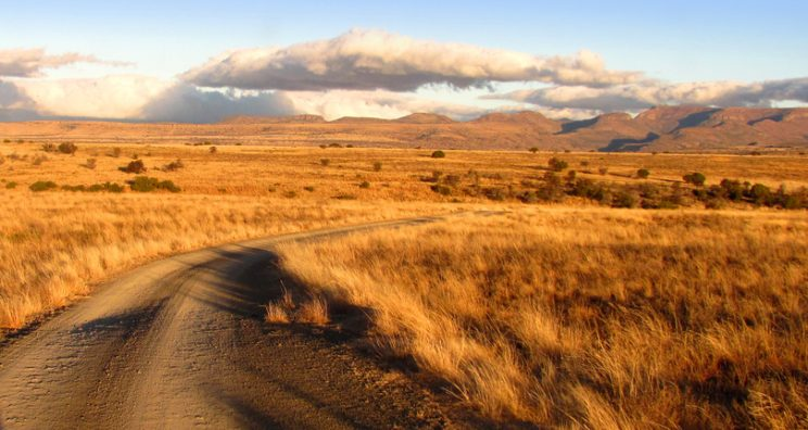 A beautiful late afternoon game drive in the Mountain Zebra National Park, South Africa