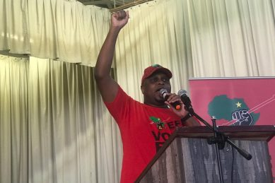 Shivambu lashes out at 'hired guns' who are 'desperate to tell lies'