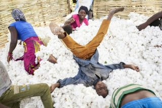 Mali hopes to cotton on to added value