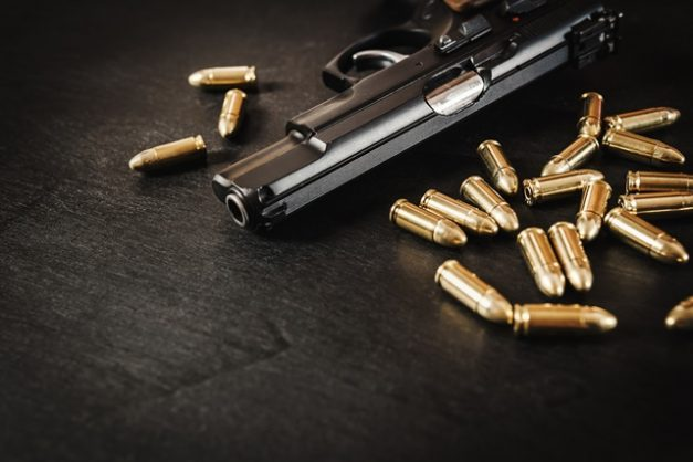 Cele asks MPs for another firearm amnesty period