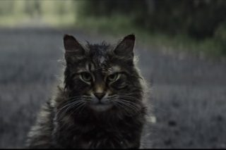 Review: 'Pet Sematary' as laughable as its spelling