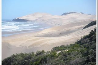 SANParks gazettes three new Marine Protected Areas