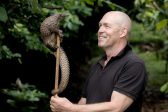 Endangered pangolins are the stars of a new film