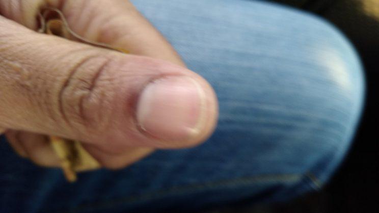 IEC to buy new voter registration technology after not-so-indelible ink saga