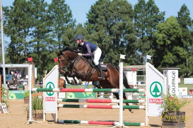 Heavy Metal: From top racehorse to accomplished showjumper