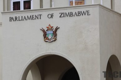 Zim opposition MPs sue minister, police over parly assault