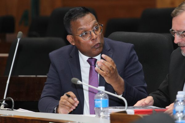 Royith Rajdhar of Impact Investing testifying at the PIC commission of inquiry on Wednesday. Image: Moneyweb