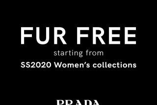Prada fashion house to remove animal fur from its collections