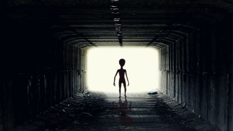Experts and abductees will all be aboard the alien cruise