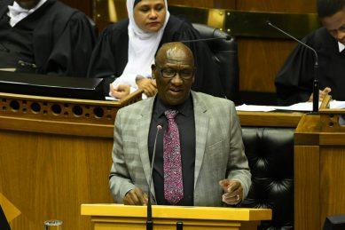 I'm glad you're interim leader not permanent DA leader, Cele tells Steenhuisen