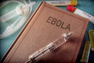 Half of Ebola outbreaks go 'undetected': study