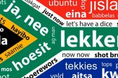 These are SA's most spoken languages in 2019