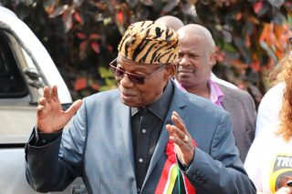 Buthelezi's continued IFP leadership has destroyed young leaders – analyst