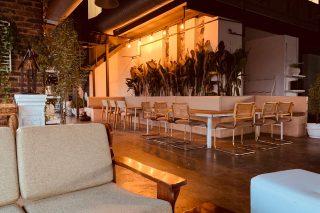 Lush Lounge restaurant in Ruimsig definitely deserves an encore