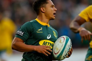 New hero Herschel inspires as Springboks tame Wallabies