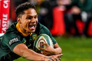 Rassie: Marvellous Herschel mirrored Springboks' performance