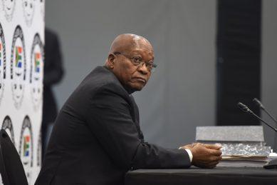 Ramatlhodi's wish that Zuma undergoes lie detector test 'not possible'