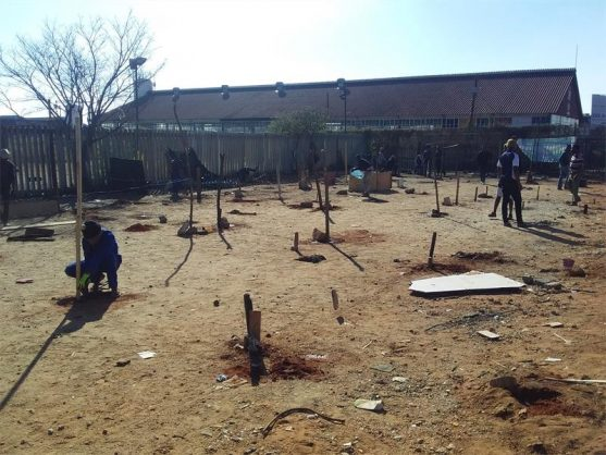 Land grabbers erect shacks on an open space belonging to the police. Photo: Nduduzo Nxumalo