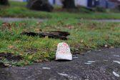 Die ontbrekende perderuitermotor in Kaapstad sien 'n beroep op familie uit - Citizen