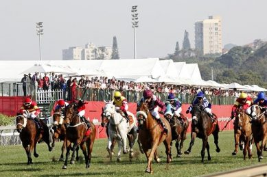 They're off! Horse racing gets go-ahead