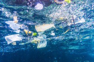 Plastic rubbish destroys island paradise