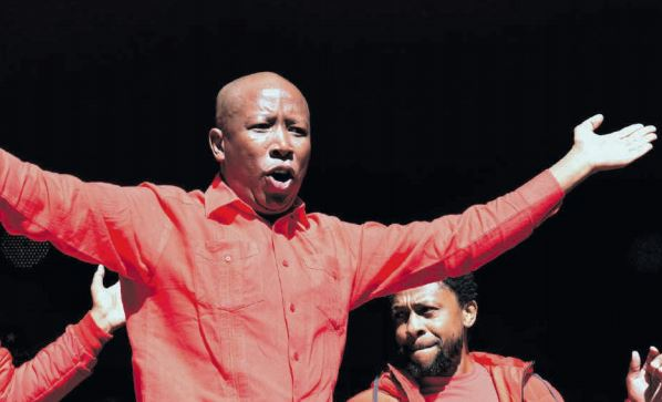 Gungubele: Debating with you Malema is a waste of time