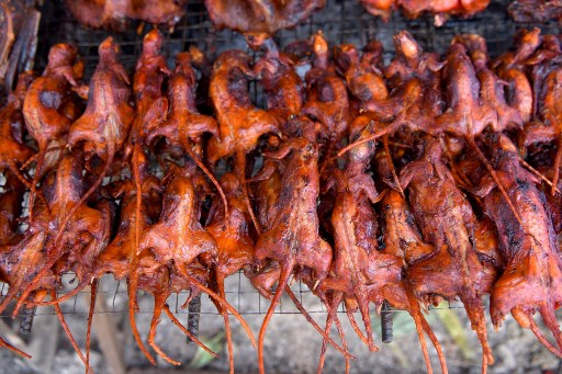 WATCH: Rats a cheap street snack in Cambodia