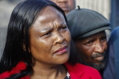 Mkhwebane appears to be fighting against the law itself