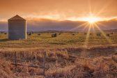 SA boere gaan nou na Kanada om 'prairie provinsies' te ontwikkel - verslag - Citizen
