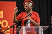 Shivambu credits Malema with getting Zim government to honour Mugabe burial wishes