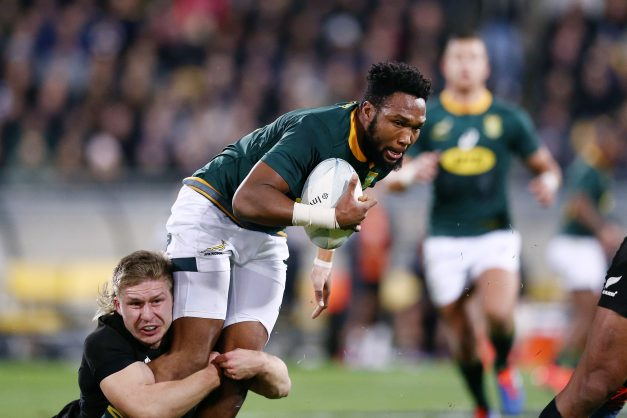 Springboks now two steps away from glory