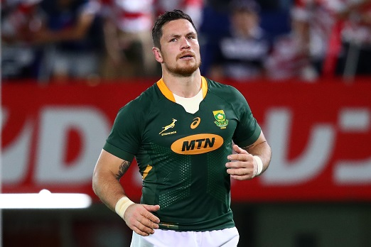 Flo beats Kwagga in bench race as Springboks remain unchanged