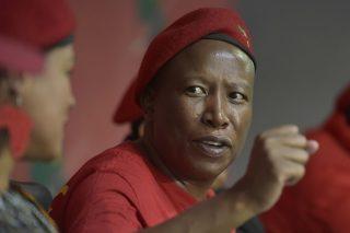 Malema bans amaBhungane, Scorpio and Daily Maverick from EFF events