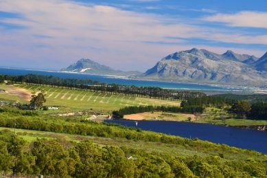 One of three SA wine estates named among world's top 50 vineyards