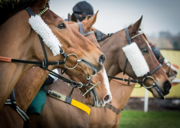 SA horse racing in dire straits as Phumelela likely to apply for business rescue