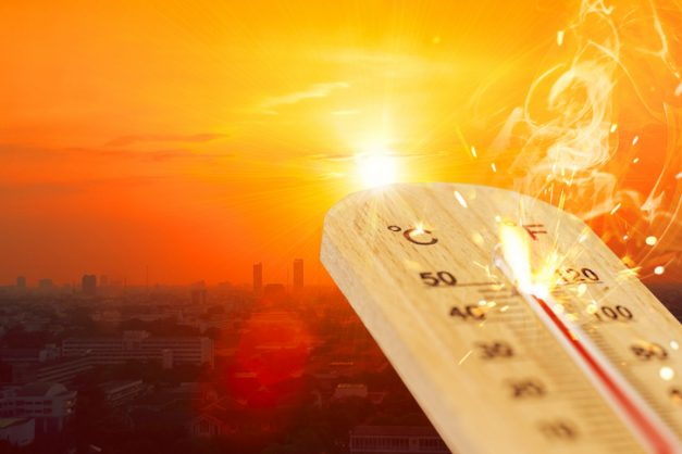 Another scorcher expected for Gauteng as heatwave peaks