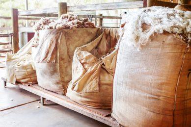 Cops intercept R8m worth of suspected stolen wool from Lesotho