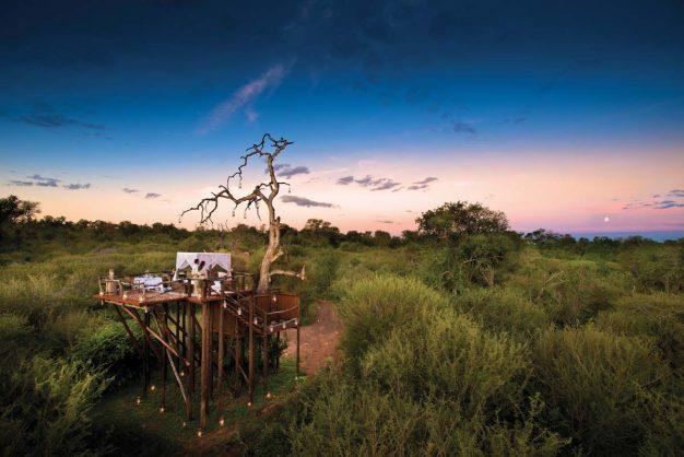 Big 5 Safari & Romantic Sleep-out at Lion Sands