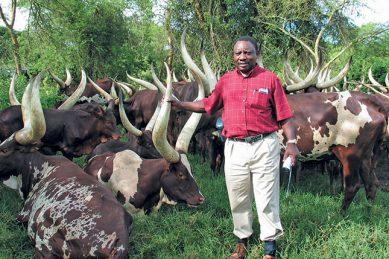 Peta doubles down on Ramaphosa trophy hunting, pigeon breeding claims