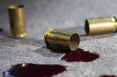 Gauteng farmer kills alleged robber